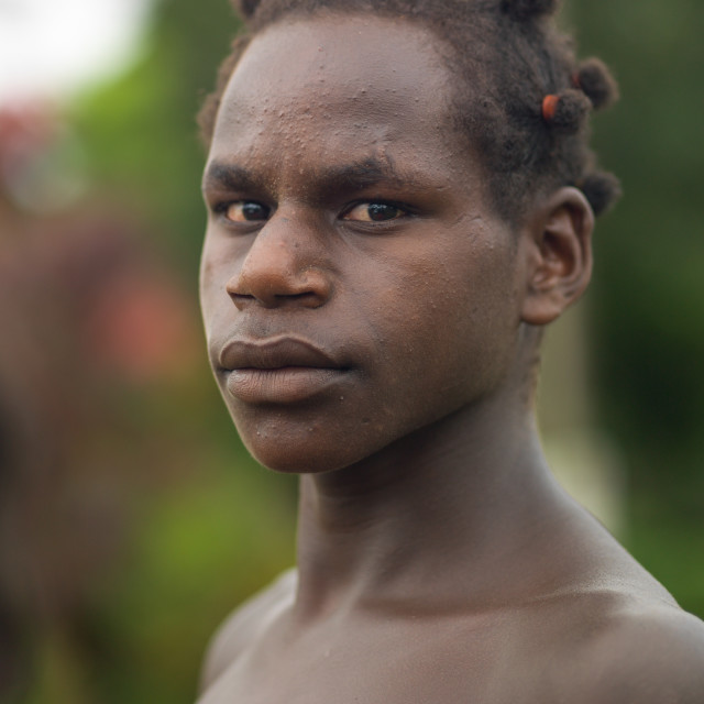 """Ni-Vanuatu young man with a special hairstyle, Sanma Province, Espiritu..."" stock image"