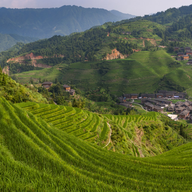"""""""Beautiful view of the Dazhai village and the surrounding Longsheng Rice Terraces in the province of Guangxi in China; Concept for travel in China"""" stock image"""