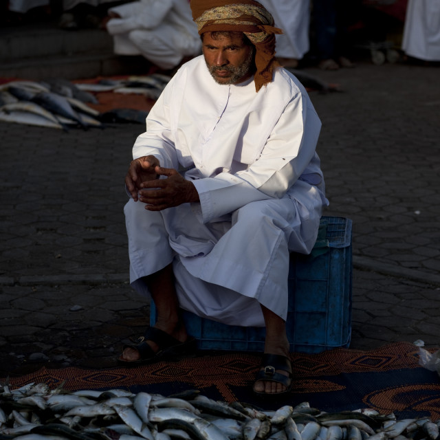 """Fish Seller In Dishdasha Behind Of A Mass Of Sardines, Nizwa Fish Market, Oman"" stock image"