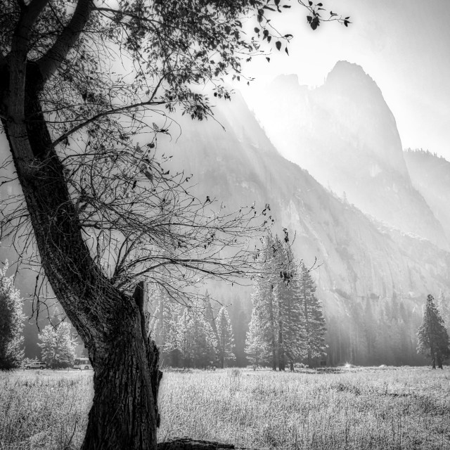 """Yosemite National Park"" stock image"
