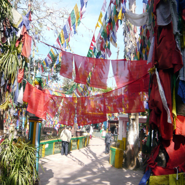 """Prayer Flags (4)"" stock image"