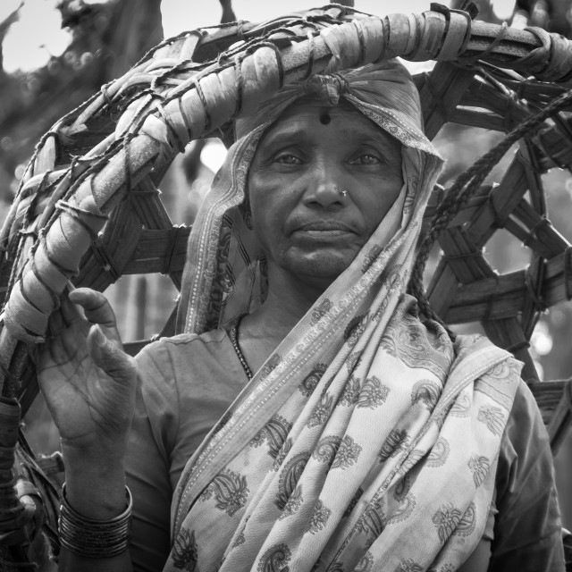 """""""Woman villager with basket - India b/w"""" stock image"""