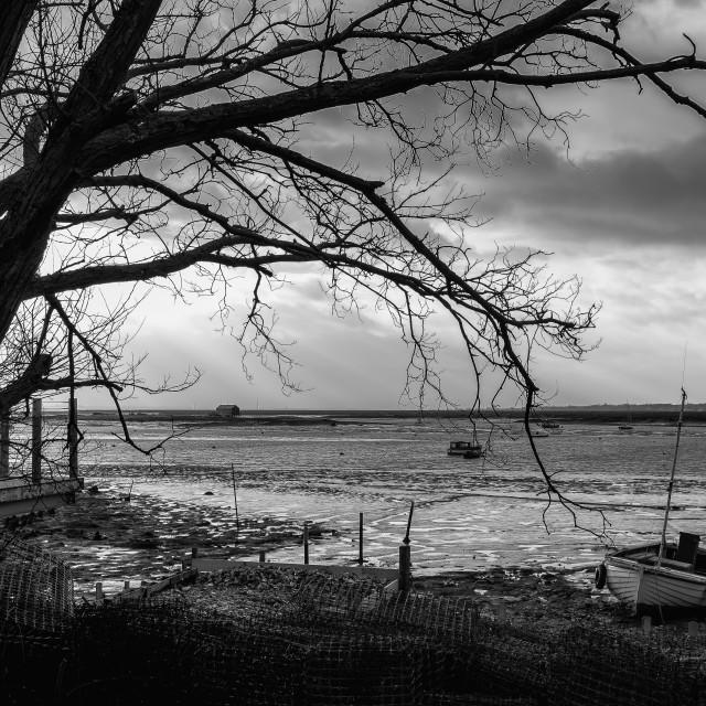 """""""Mersea Island"""" stock image"""
