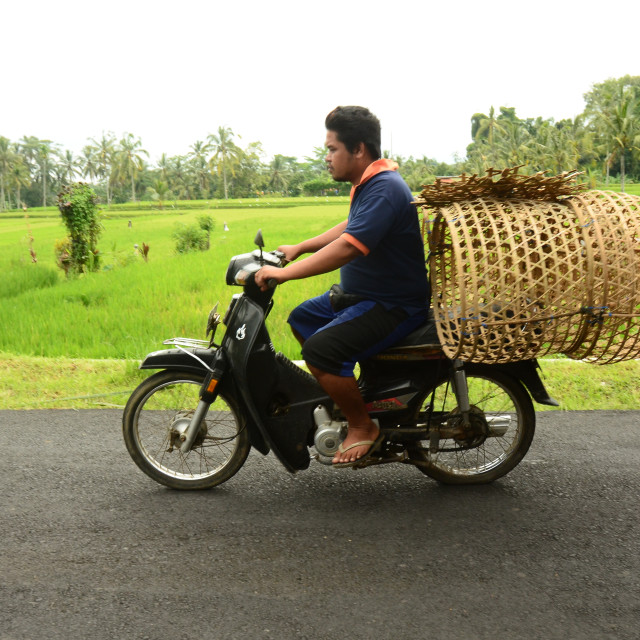 """Moped rider in Bali"" stock image"