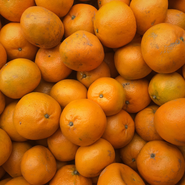 """Fresh Oranges"" stock image"