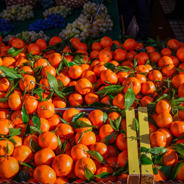 """""""Display of Oranges in Open Air Market Cannes, France"""" stock image"""