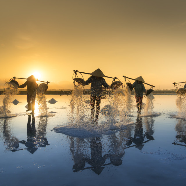 """the women are working on the salt field at dawn. Salt field Hon Khoi in Nha Trang, Viet Nam."" stock image"
