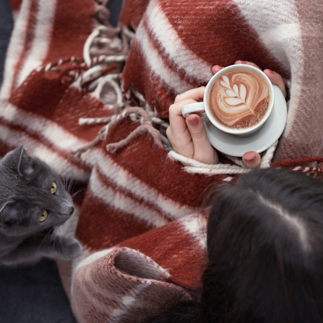 """girl with a cup of coffee and a cat"" stock image"