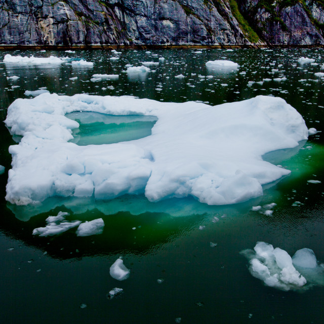 """Ice Chunk in Glacial Waters"" stock image"