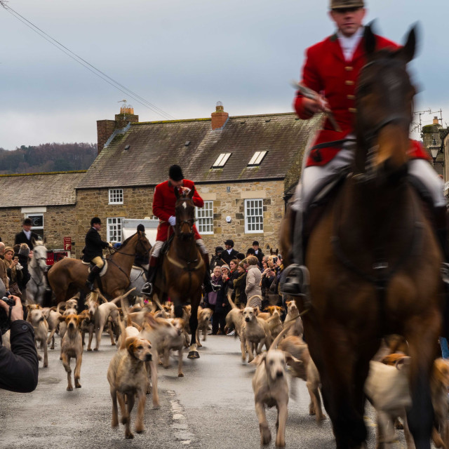 """Boxing Day Hunt IV"" stock image"