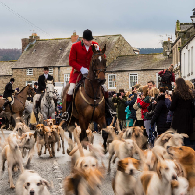 """Boxing Day Hunt II"" stock image"