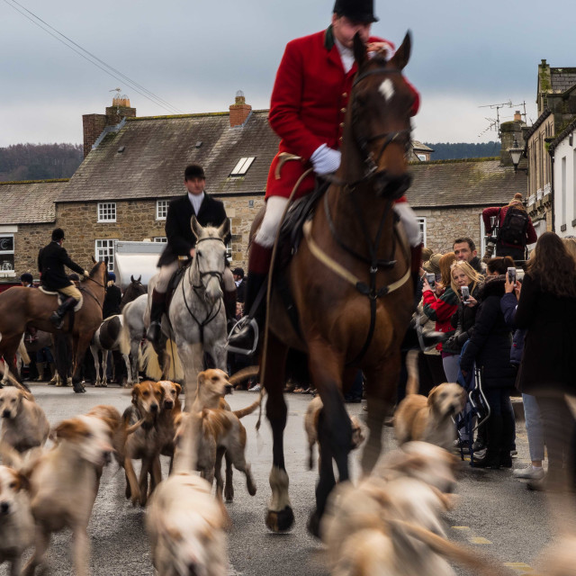 """Boxing Day Hunt I"" stock image"