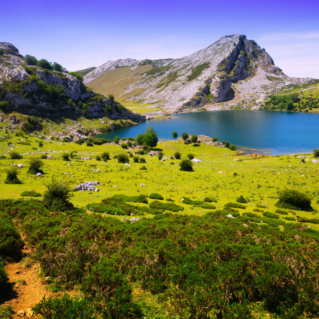 """""""Summer mountains landscape with lake"""" stock image"""