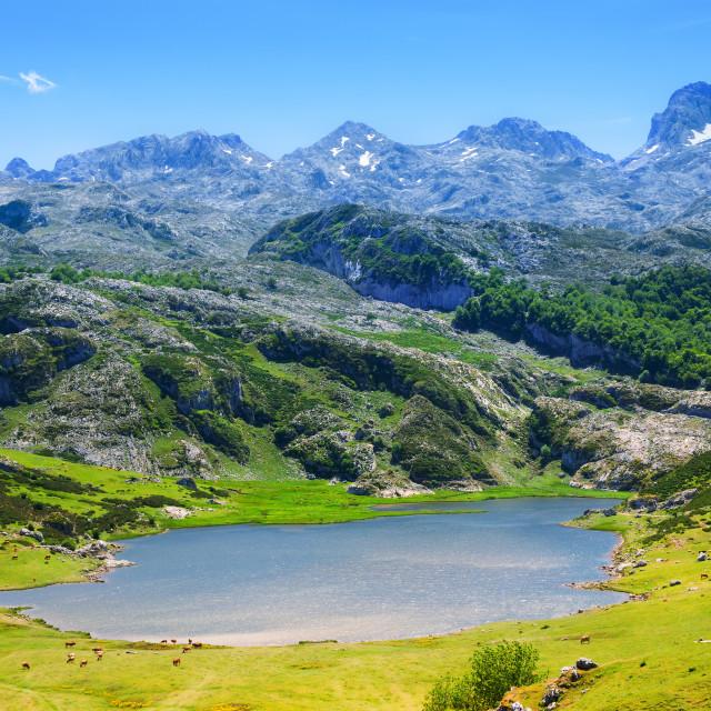 """""""summer lake in Asturias"""" stock image"""