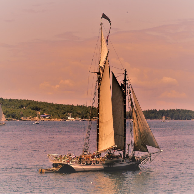 """sailing in Somes Sound"" stock image"