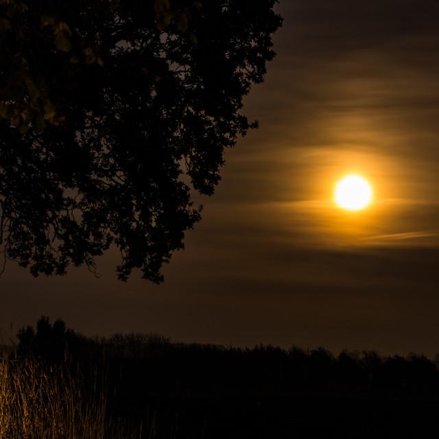 """""""Misty autumn moon"""" stock image"""