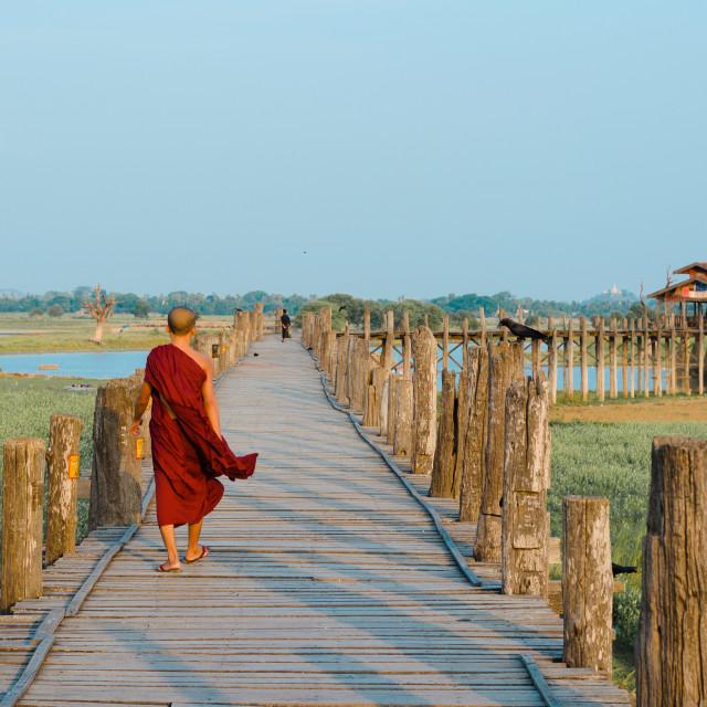 """MANDALAY, MYANMAR - 3 JUN 2014: A Buddhist monk walks on the U-Bein teakwood..."" stock image"