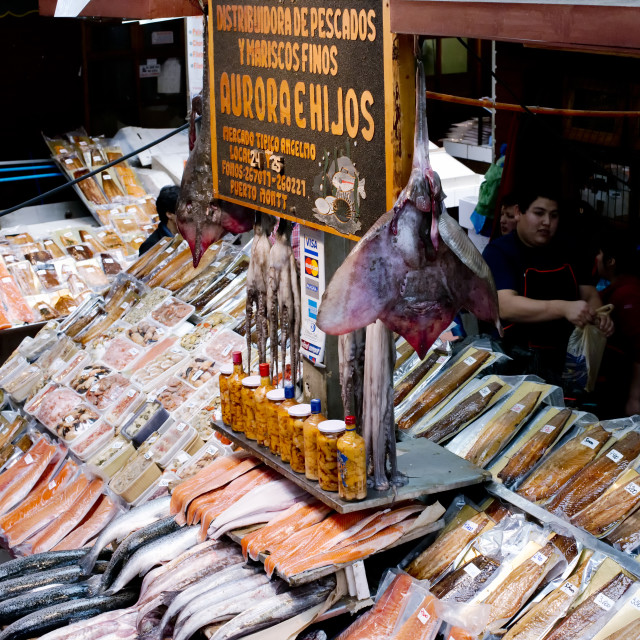 """""""Diversity of fresh & dried fish and seafood at Angelmo Fish Market"""" stock image"""