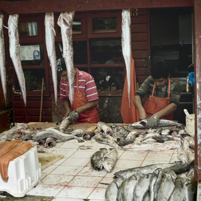 """Fishermen Cleaning Salmon at Angelmo Fish Market"" stock image"