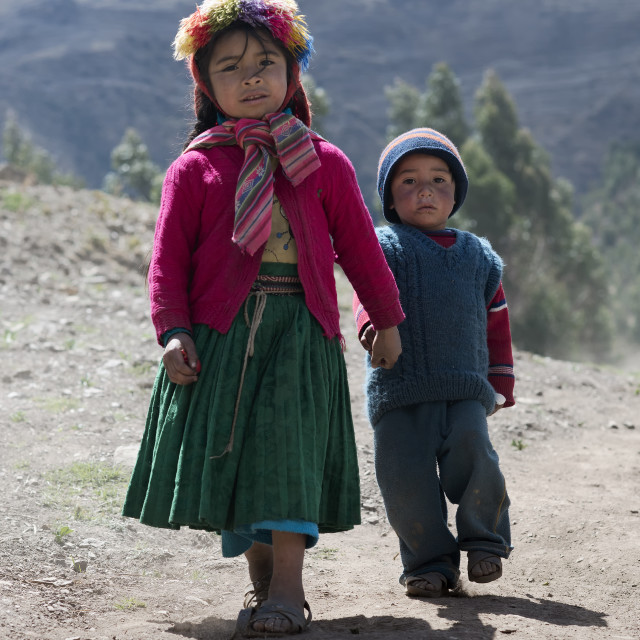 """""""Portrait of a Native Peruvian girl and her little brother dressed in colourful traditional handmade outfit"""" stock image"""