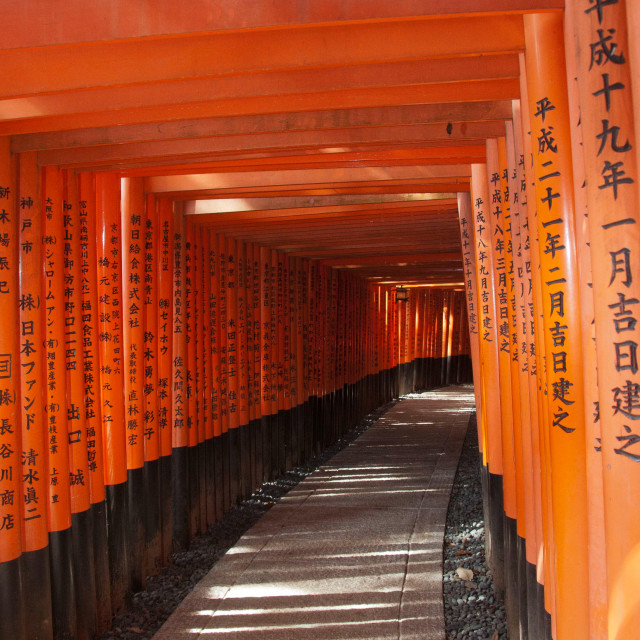 """Fushimi Inari, Kyoto, Japan"" stock image"