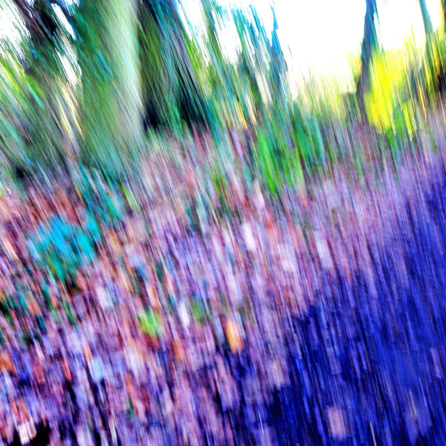 """""""Abstract of Nature"""" stock image"""