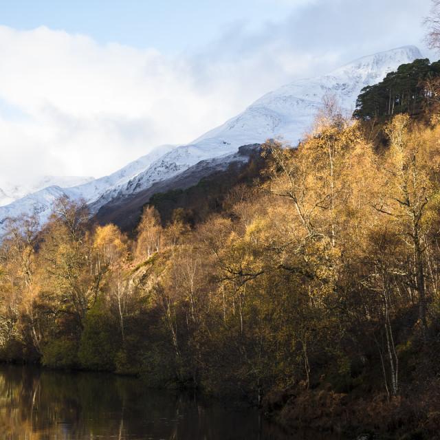 """Glen Affric Autumn Colours"" stock image"
