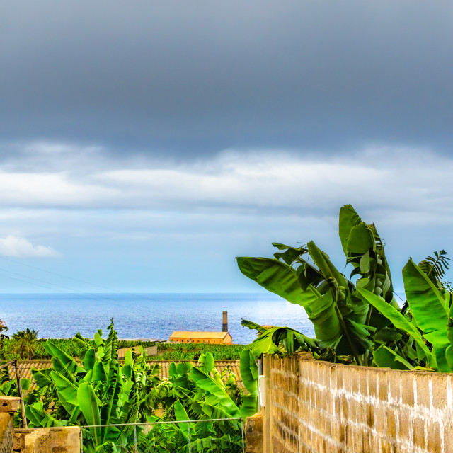 """""""Los Silos a small but beautiful place on the north coast of Tene"""" stock image"""