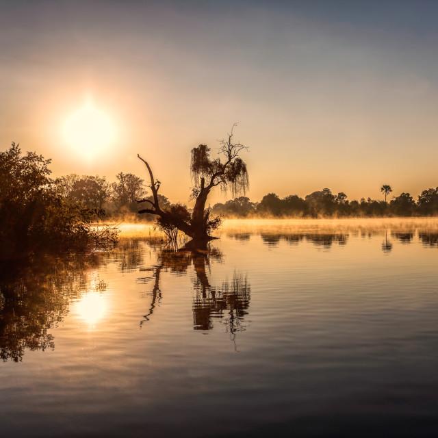 """The misty Zambezi River at Sunrise"" stock image"