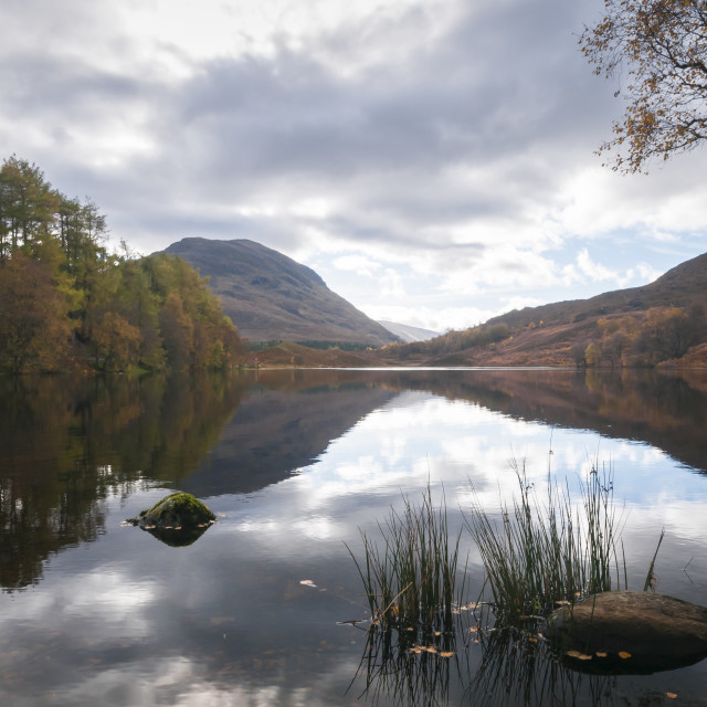 """""""Loch Reflections"""" stock image"""