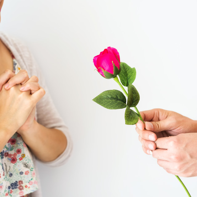 """""""Man hand giving pink rose to girlfriend"""" stock image"""