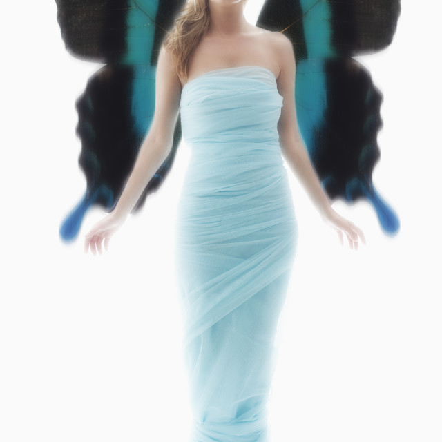 """""""Young woman in full length gown"""" stock image"""