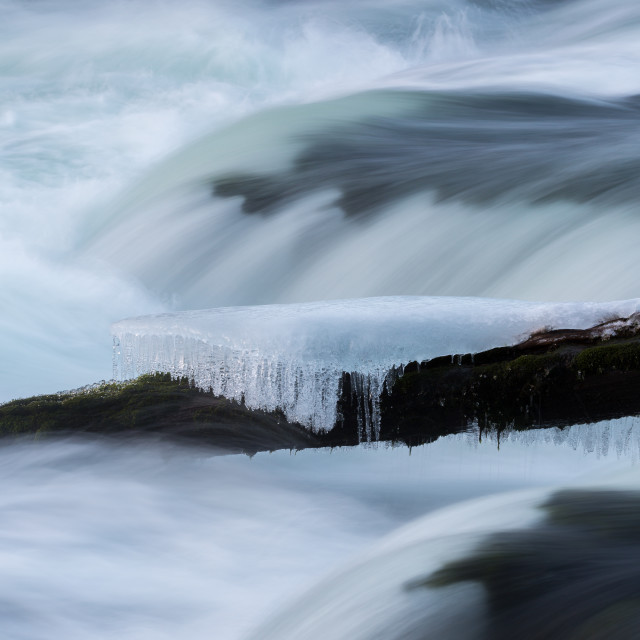 """Icy Log in River"" stock image"