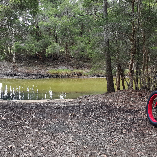 """""""Bicycle by a lagoon"""" stock image"""