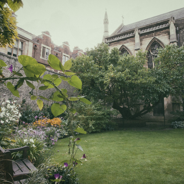 """English Garden Scene"" stock image"