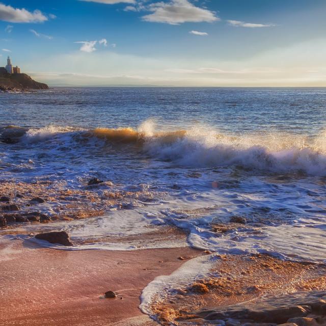 """Bracelet Bay Surf"" stock image"