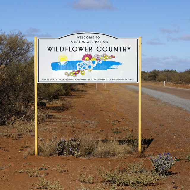 """""""wildflower country sign"""" stock image"""