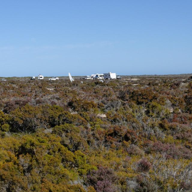 """""""Camping at Bush Bay"""" stock image"""