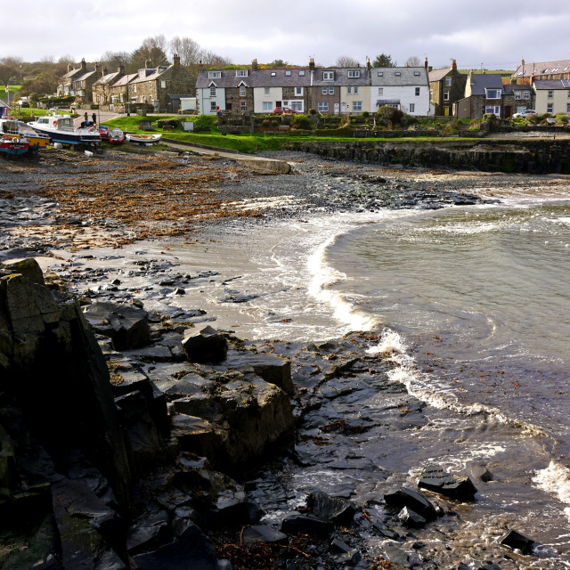 """""""The Harbour, Craster, Northumberland"""" stock image"""