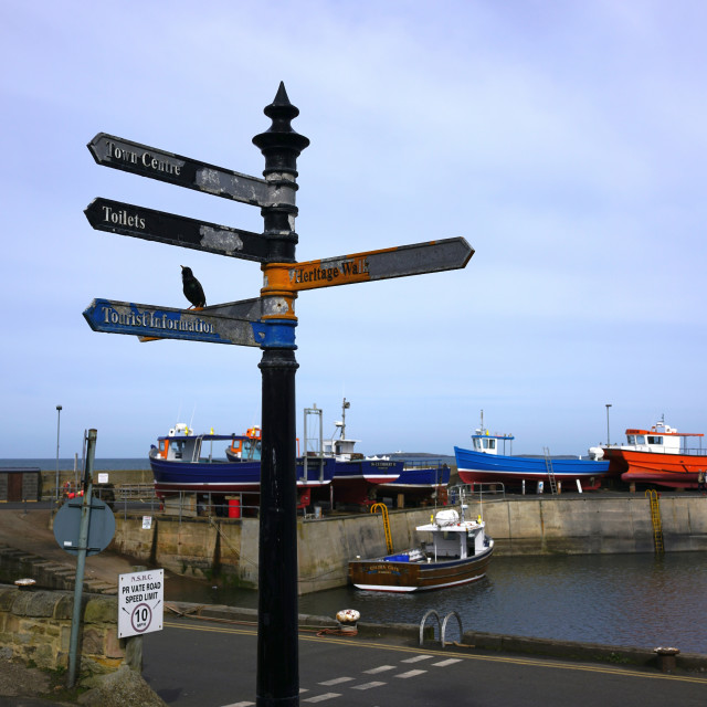 """""""The Harbour, Seahouses, Northumberland"""" stock image"""
