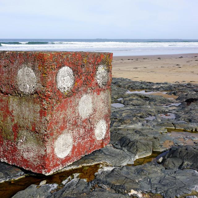 """Outdoor Artwork, Bamburgh, Northumberland"" stock image"
