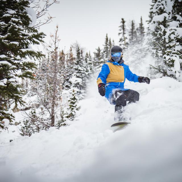 """Girl snowboard landscape"" stock image"