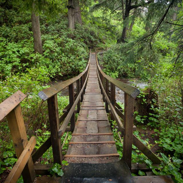 """Hiker's Suspension Bridge"" stock image"