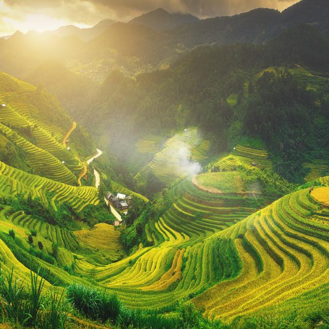 """""""Sunset on rice mountain"""" stock image"""