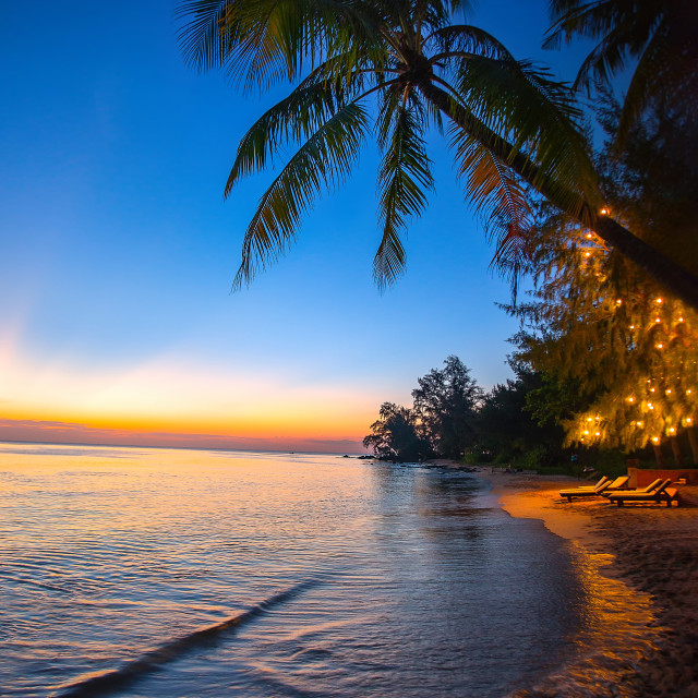 """Beach Sunset Coconut Tree"" stock image"