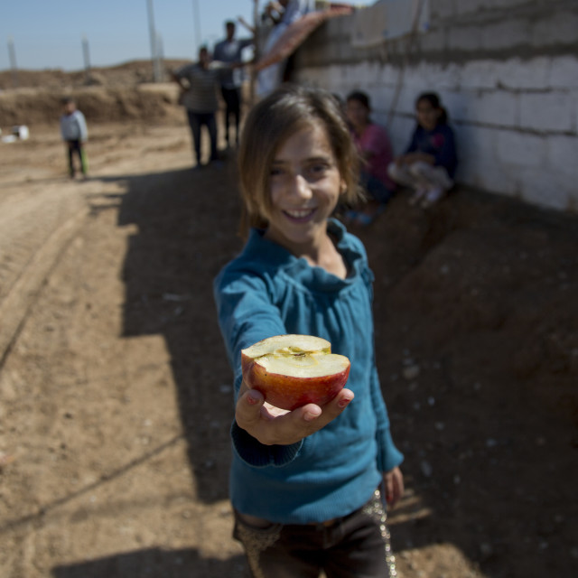 """A Young Syrian Refugee Girl Sharing An Apple, Qushtapa Refugee Camp, Erbil,..."" stock image"