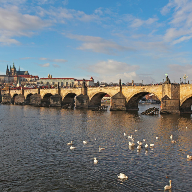 """Side view of Charles Bridge, Prague, Czech Republic"" stock image"