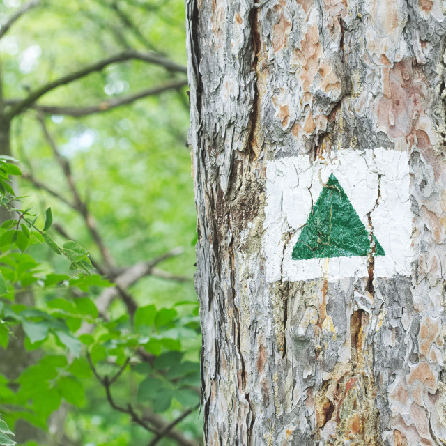 """""""Green Triangle Tourist Sign"""" stock image"""