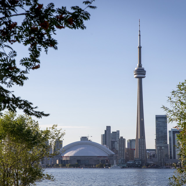 """""""Afternoon in Toronto"""" stock image"""