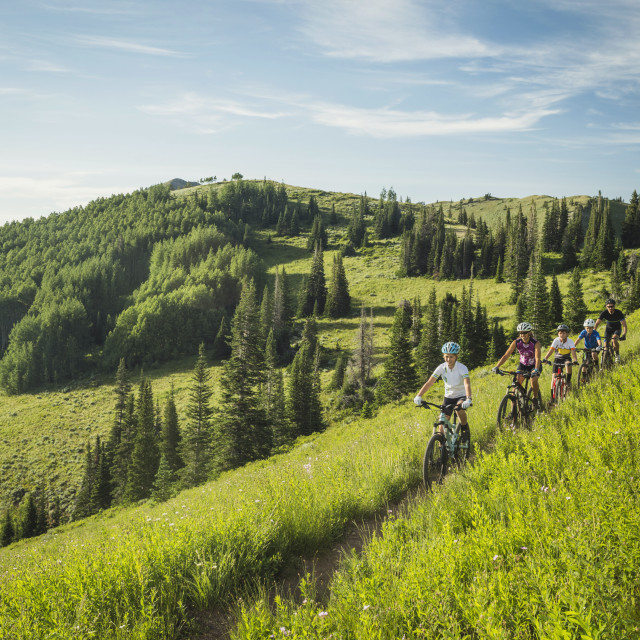"""""""Parents with children (10-11,12-13, 14-15) during bike trip"""" stock image"""